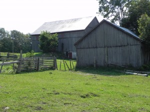 Image: barn view